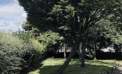 Land For Sale In Aberdeen Street Birmingham